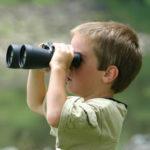 Curiosidad-Cualidad del Blogger