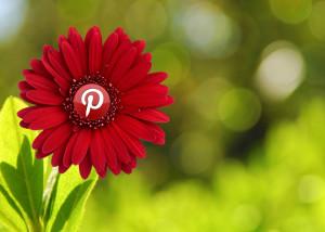 Pros y contras del uso de las Redes Sociales en tu negocio-Pinterest