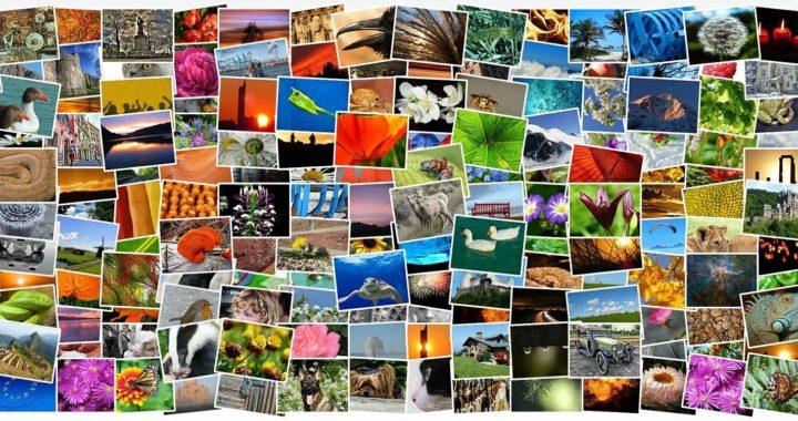 Razones-para-usar-imágenes-en-un-blog-y-en-las-redes-sociales